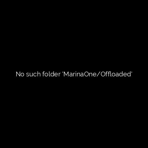 Diver enjoying reef dive off Deerfield Beach